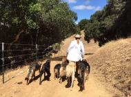 Ellie_hiking