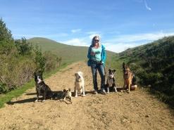 Ellie-on-Trail